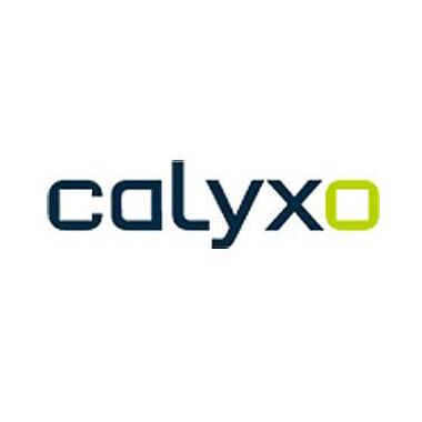 Moduli fotovoltaici Calyxo